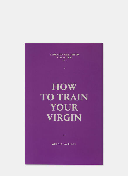 New Lovers 1: How to Train Your Virgin by Wednesday Black