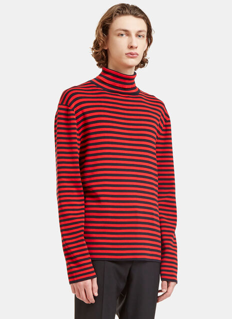 Striped Roll Neck Knit Sweater