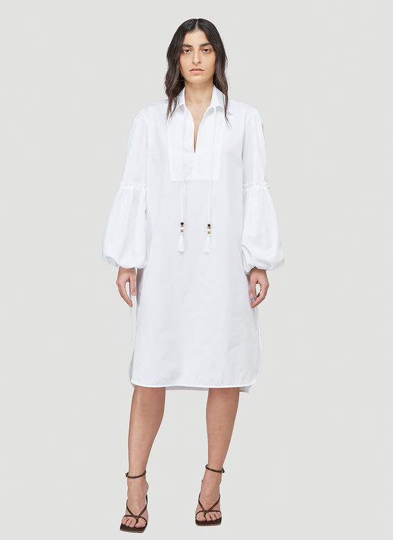 Max Mara Fedora Dress 2