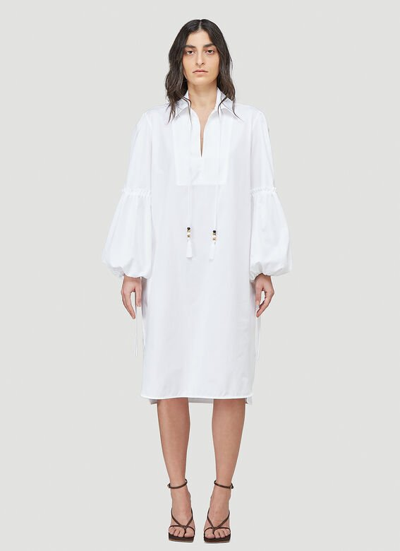 Max Mara Fedora Dress 1