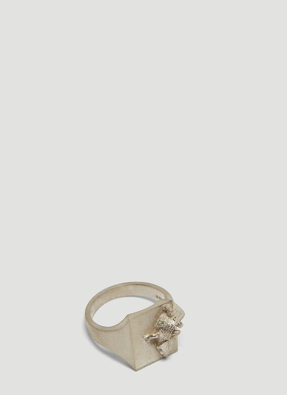 The Chameleon Ring In Silver by Mass