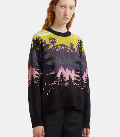 Intarsia Knit Crew Neck Sweater