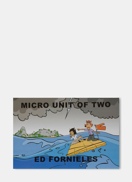 Books Micro Unit of Two by Ed Fornieles