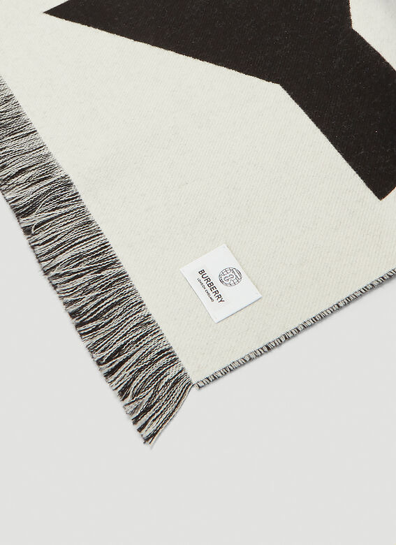 Burberry Reversible Scarf 4